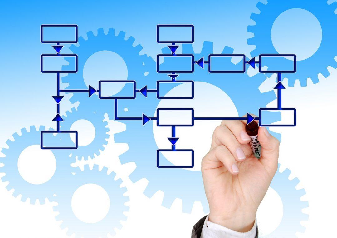 schema di struttura organizzativa